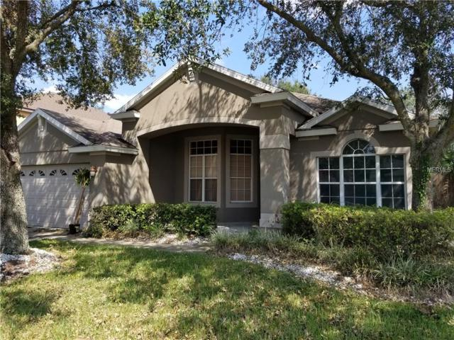 393 Lake Dawson Place, Lake Mary, FL 32746 (MLS #V4723577) :: Premium Properties Real Estate Services