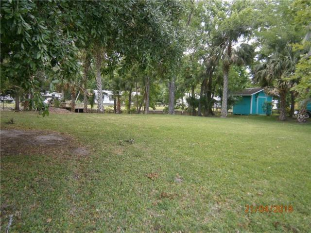 Maple Road, Astor, FL 32102 (MLS #V4900136) :: NewHomePrograms.com LLC