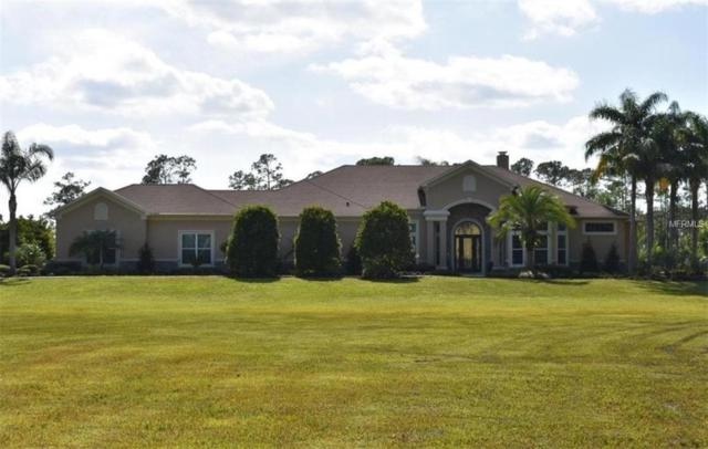 Address Not Published, New Smyrna Beach, FL 32168 (MLS #V4900439) :: The Duncan Duo Team