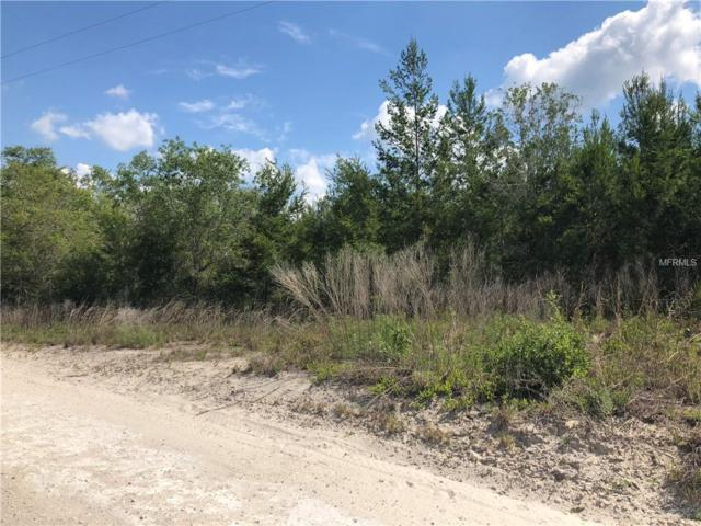 931 Still Road, Pierson, FL 32180 (MLS #V4900753) :: Griffin Group