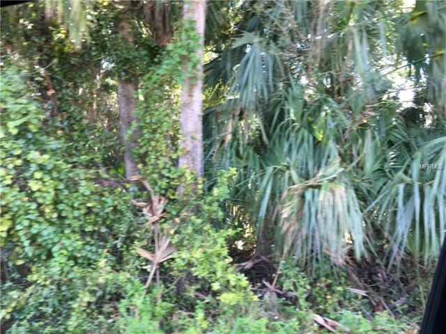 Lot 16 S. Shell Rd, Deland, FL 32720 (MLS #V4900929) :: The Duncan Duo Team