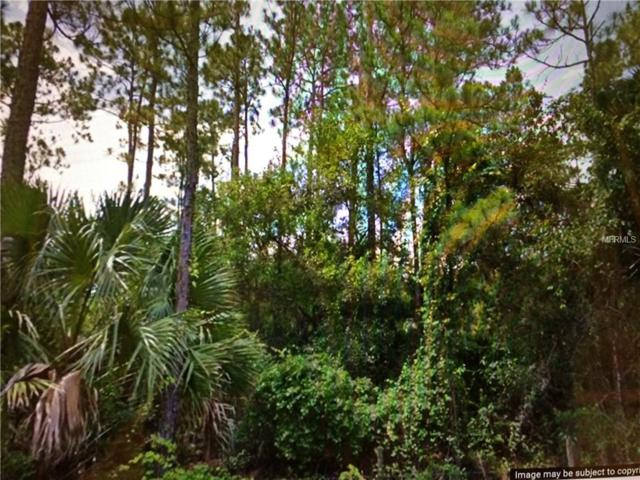 Lake Harney Road, Osteen, FL 32764 (MLS #V4901160) :: The Lockhart Team