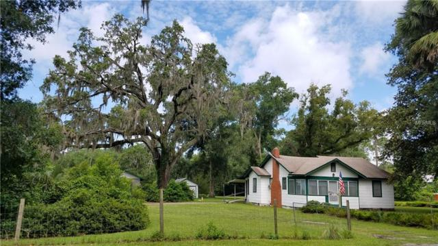260 N Summit Avenue, Lake Helen, FL 32744 (MLS #V4901444) :: The Duncan Duo Team
