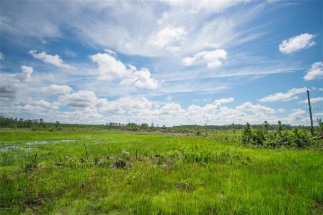 0000 Lake Harney Woods Boulevard, Mims, FL 32754 (MLS #V4901494) :: The Duncan Duo Team