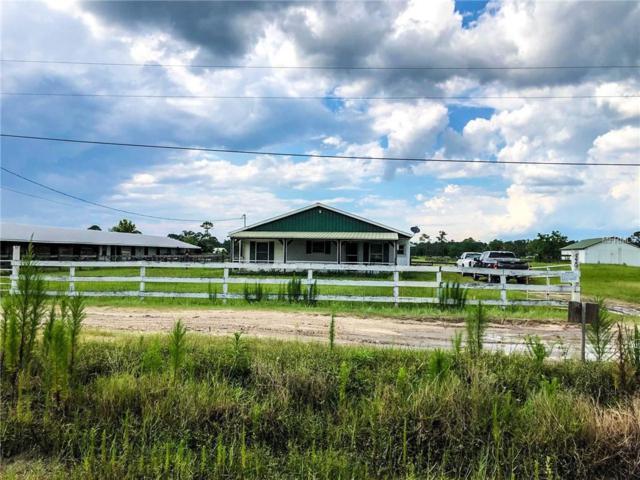 1220 Mandy Lane, Astor, FL 32102 (MLS #V4901753) :: Mark and Joni Coulter | Better Homes and Gardens