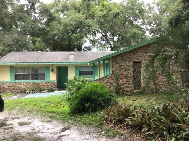 550 E Division Street, Deland, FL 32724 (MLS #V4901869) :: Griffin Group