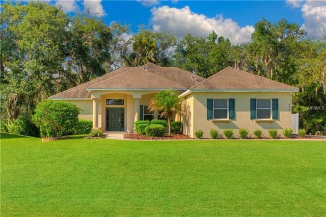 2925 Paolini Drive, Deland, FL 32720 (MLS #V4901976) :: The Price Group