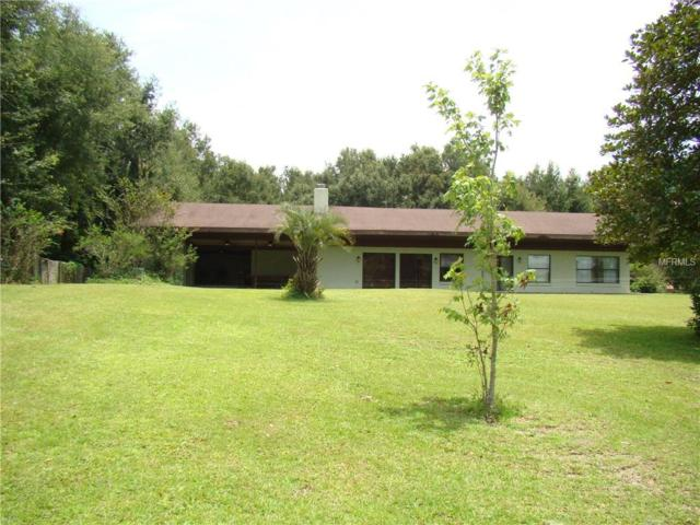 242 Tangerine Avenue, Lake Helen, FL 32744 (MLS #V4902008) :: The Duncan Duo Team
