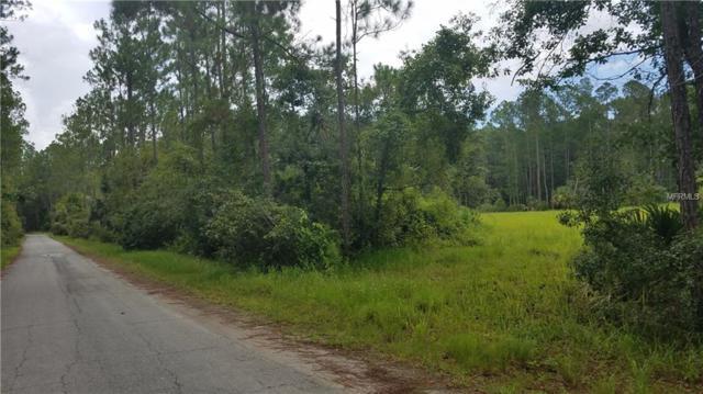 2750 Big John Drive, Deland, FL 32724 (MLS #V4902041) :: Griffin Group