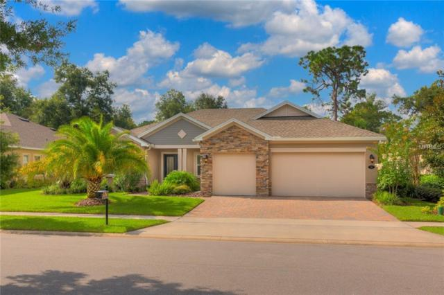 114 Ivydale Manor Drive, Deland, FL 32724 (MLS #V4902108) :: The Light Team