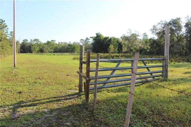 813 Clifton Road, De Leon Springs, FL 32130 (MLS #V4902231) :: Griffin Group
