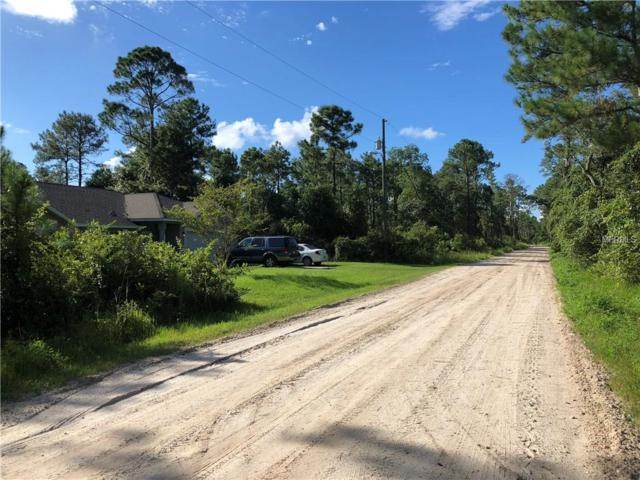 925 11TH Avenue, Deland, FL 32724 (MLS #V4902263) :: Premium Properties Real Estate Services