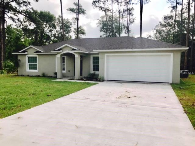 2500 Camelia Road, Deland, FL 32724 (MLS #V4902305) :: Premium Properties Real Estate Services