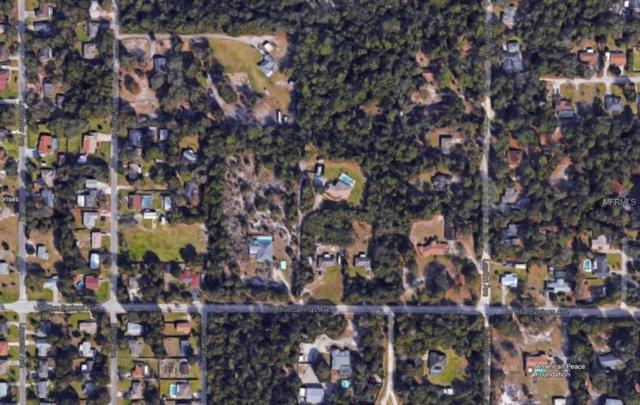 1355 W Blue Springs Avenue, Orange City, FL 32763 (MLS #V4902364) :: Premium Properties Real Estate Services