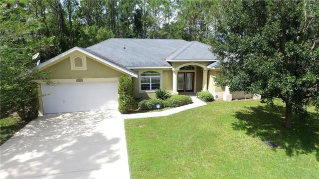 11 Rainbrook Drive, Palm Coast, FL 32164 (MLS #V4902852) :: The Duncan Duo Team