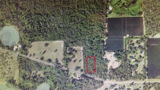 Spring Garden Ranch Road, De Leon Springs, FL 32130 (MLS #V4903082) :: The Duncan Duo Team