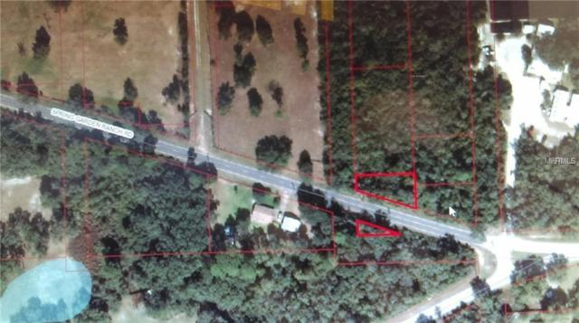 Spring Garden Ranch Road, De Leon Springs, FL 32130 (MLS #V4903085) :: The Duncan Duo Team