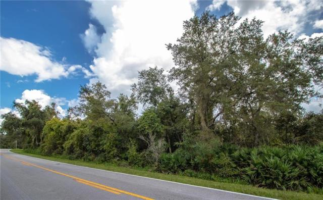 Reynolds Road, De Leon Springs, FL 32130 (MLS #V4903090) :: Griffin Group