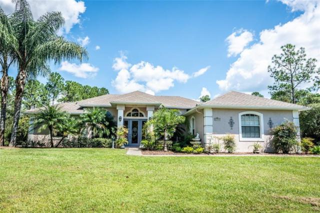 29945 Violet Avenue, Eustis, FL 32736 (MLS #V4903095) :: The Duncan Duo Team