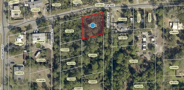 Veva Avenue, Paisley, FL 32767 (MLS #V4903371) :: The Duncan Duo Team