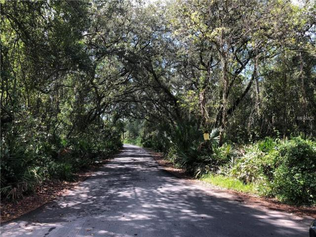 Stillbrook Trail, Deltona, FL 32725 (MLS #V4903379) :: The Duncan Duo Team