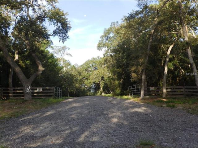Renbar Road, De Leon Springs, FL 32130 (MLS #V4903425) :: Bustamante Real Estate