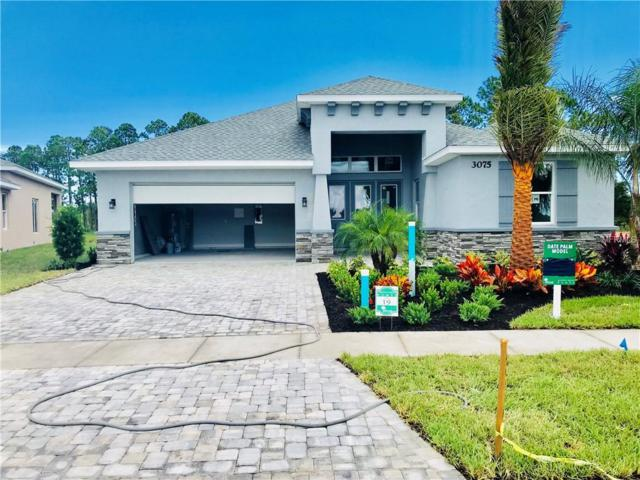 Address Not Published, New Smyrna Beach, FL 32168 (MLS #V4903487) :: The Light Team