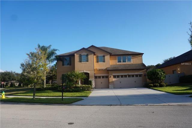 30301 Gidran Terrace, Mount Dora, FL 32757 (MLS #V4903515) :: Mark and Joni Coulter | Better Homes and Gardens