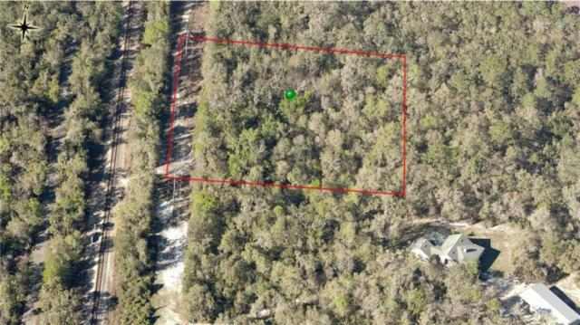 Werley Trail, Orange City, FL 32763 (MLS #V4903639) :: The Price Group