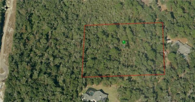Werley Trail, Orange City, FL 32763 (MLS #V4903640) :: The Price Group
