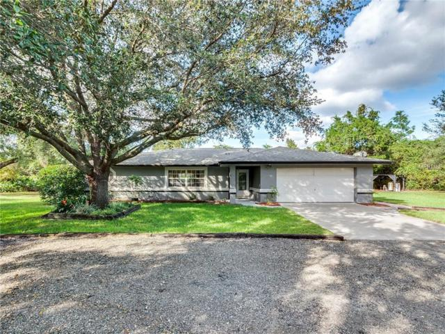 176 Briarwood Drive, Debary, FL 32713 (MLS #V4903801) :: Mark and Joni Coulter | Better Homes and Gardens