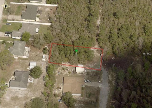 Chestnut Avenue, Orange City, FL 32763 (MLS #V4903819) :: Mark and Joni Coulter | Better Homes and Gardens
