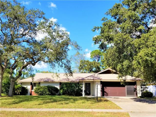 896 Sullivan Street, Deltona, FL 32725 (MLS #V4903928) :: Premium Properties Real Estate Services