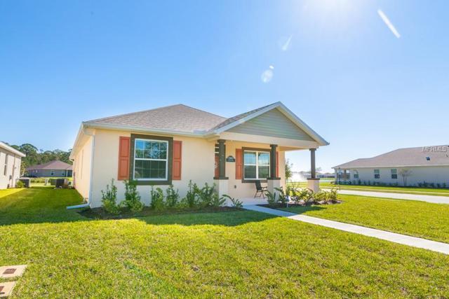 3365 Meleto Boulevard, New Smyrna Beach, FL 32168 (MLS #V4903944) :: The Duncan Duo Team