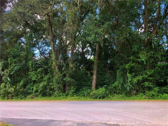 796 N Savary Avenue, Inverness, FL 34453 (MLS #V4904046) :: The Duncan Duo Team