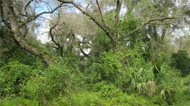 Spring Garden Avenue, De Leon Springs, FL 32130 (MLS #V4904179) :: Dalton Wade Real Estate Group