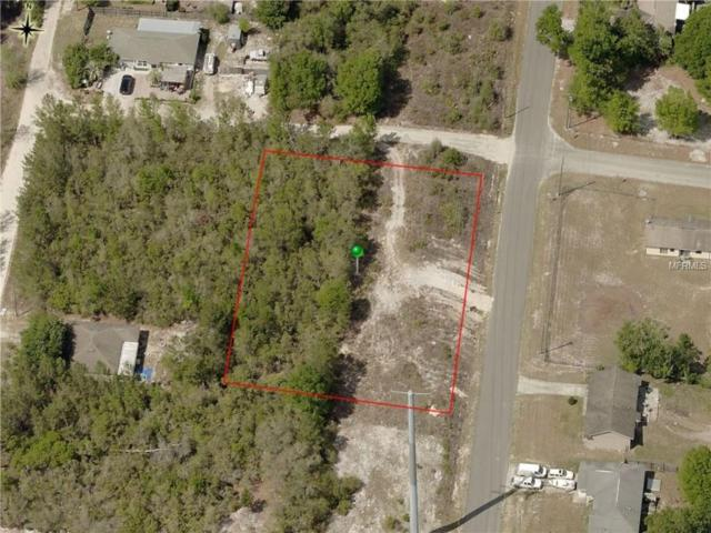 Williams Avenue, Orange City, FL 32763 (MLS #V4904269) :: Griffin Group