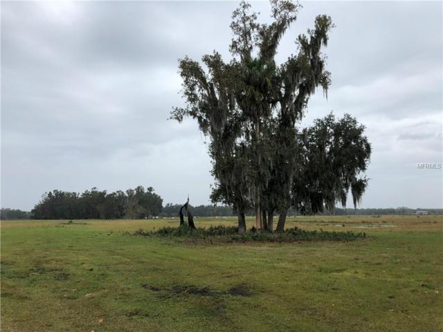 1700 Hontoon Road Lot 2, Deland, FL 32720 (MLS #V4904571) :: Mark and Joni Coulter | Better Homes and Gardens