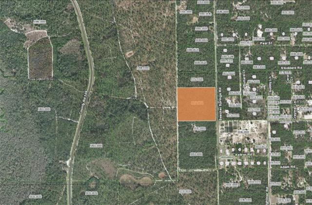 Beecher Springs Rd, Welaka, FL 32193 (MLS #V4904602) :: The Duncan Duo Team