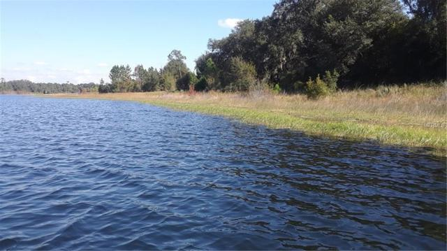 1285 Blackwelder Road, De Leon Springs, FL 32130 (MLS #V4904713) :: Griffin Group