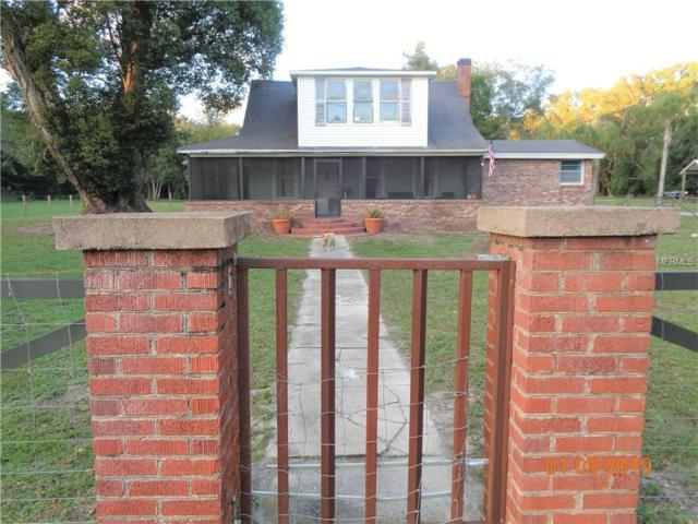 156 E 3RD Avenue, Pierson, FL 32180 (MLS #V4904916) :: Jeff Borham & Associates at Keller Williams Realty