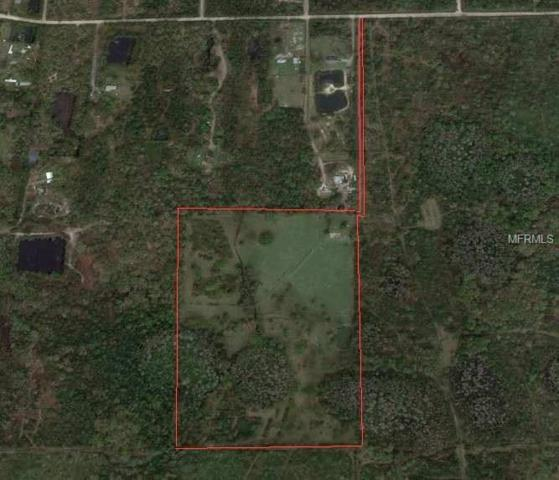 Address Not Published, Bunnell, FL 32110 (MLS #V4904975) :: Homepride Realty Services