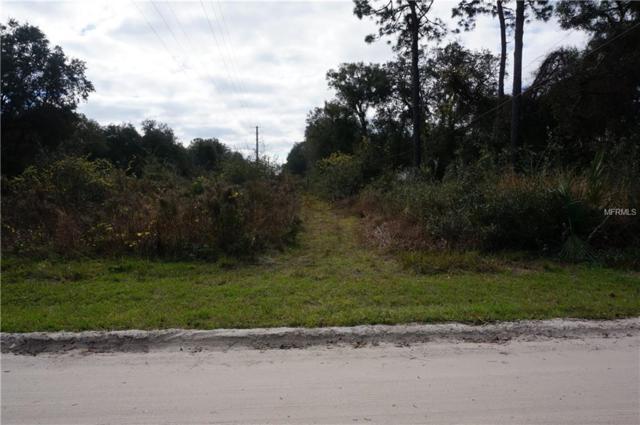 13TH Street, Orange City, FL 32763 (MLS #V4905060) :: Homepride Realty Services