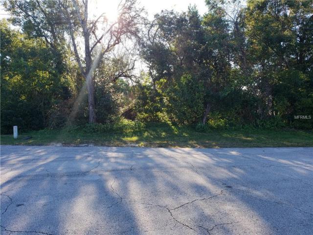 691 E Goodrich Drive, Deltona, FL 32725 (MLS #V4905134) :: Premium Properties Real Estate Services