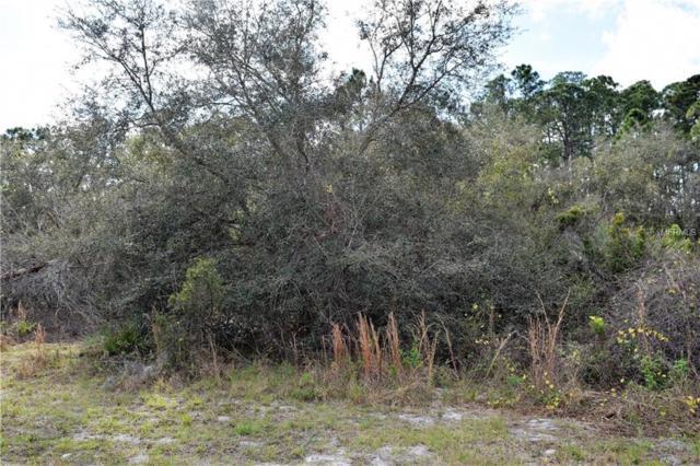 Mitnik Drive, Deltona, FL 32738 (MLS #V4905144) :: Premium Properties Real Estate Services