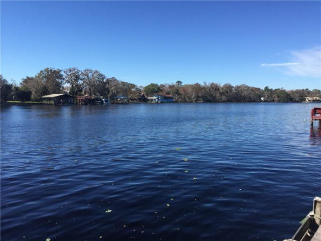 1619 River Road, Astor, FL 32102 (MLS #V4905184) :: Your Florida House Team