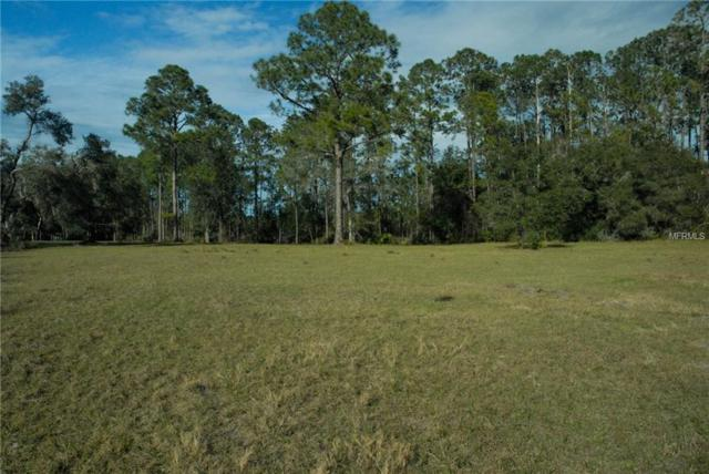 Equine Path #2, Lake Helen, FL 32744 (MLS #V4905368) :: The Duncan Duo Team