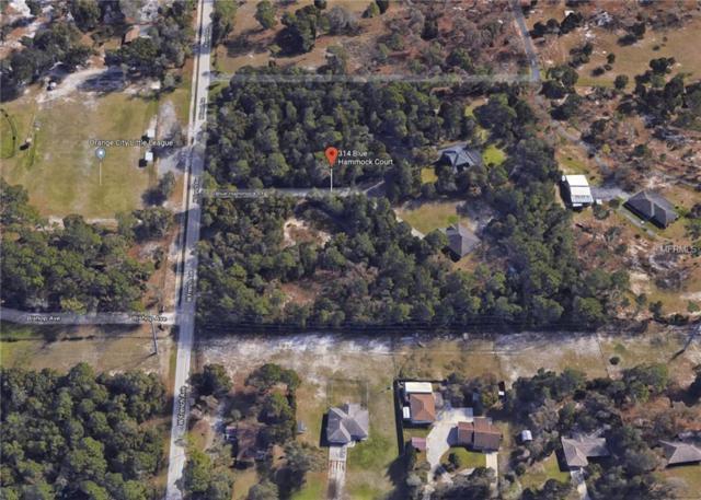 314 Blue Hammock Court, Orange City, FL 32763 (MLS #V4905409) :: Mark and Joni Coulter | Better Homes and Gardens