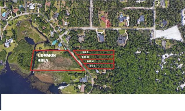 Lake Winnemissett Drive, Deland, FL 32724 (MLS #V4905420) :: Griffin Group