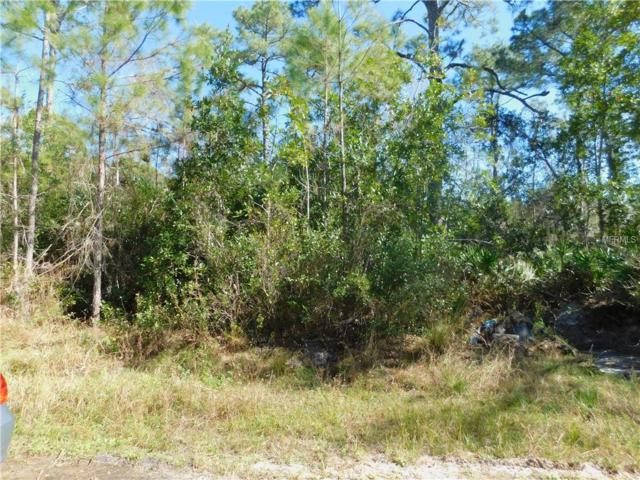 Rose Bud Drive, Deland, FL 32720 (MLS #V4905452) :: Griffin Group
